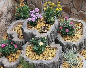 bahçe dizaynı