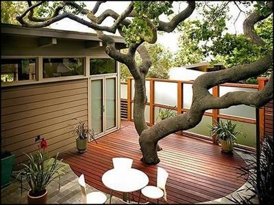 ilginç bahçe tasarımı