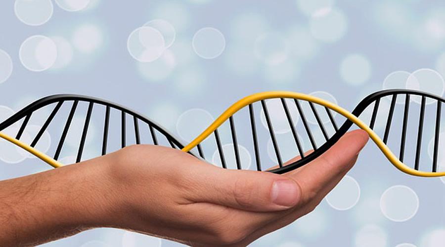 Zerdeçal'ın Geliştirilmiş Antioksidan Kapasitesi